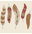 colorful set different feathers vector image vector image