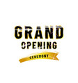 grand opening poster design isolated white vector image vector image