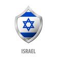 israel flag on metal shiny shield vector image