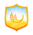 orange badge with farm field of wheat on shield vector image