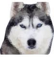 polygonal wolf polygonal style wolf vector image