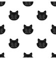 raccoon muzzle icon in black style isolated on vector image vector image