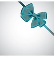 ribbon with bow on white vector image vector image