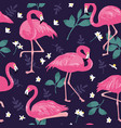 seamless pattern with pink flamingos tropical vector image