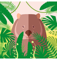 Wombat on the Jungle Background vector image