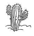 black and white cactus vector image vector image