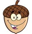 Cartoon acorn vector image