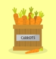 Fresh Carrots vector image