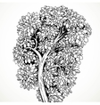 Graphically drawing tree isolated on white