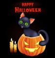 halloween background with cat sitting inside pumpk vector image vector image