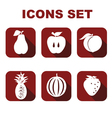 Icons set food vector image vector image