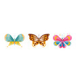 colorful butterflies set beautiful flying insects vector image vector image