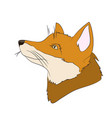 portrait of a fox vector image