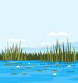Water Lily Landscale vector image