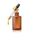 3d herbal oil pipette skin care bottle vector image vector image