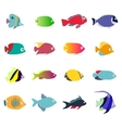 aquarium fishes - set icons isolated on vector image vector image