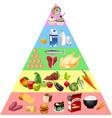 food pyramid chart vector image vector image