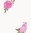 hand drawn flower natural background vector image vector image