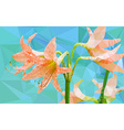 Low poly geometric of Amaryllis flower vector image vector image
