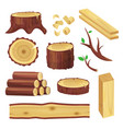 wood logs set vector image