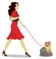 girls is walking yorkshire terrier vector image