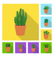 cactus and pot sign set of vector image