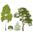 Forest plants set vector image vector image