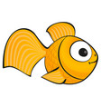 golden fish isolated vector image vector image