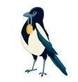 magpie with medal vector image
