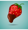 Strawberry in chocolate vector image