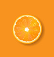 banner with fruit orange vector image