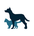 cat and dog silhoutte vector image