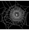 Cobweb White on Black Background vector image vector image
