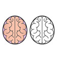 human brain view from the top of the icon or vector image