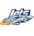 Jet plane mascot vector image
