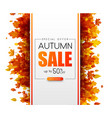 autumn 50 sale promotion card with orange leaves vector image vector image