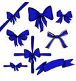 blue bow set vector image vector image