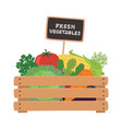 fresh vegetables a wooden box vector image