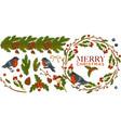 merry christmas bullfinch birds with mistletoe vector image