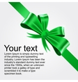 shiny green satin ribbon vector image