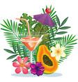 tropical cocktail with papaya fruit and decoration vector image