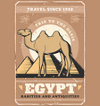 egypt travel and culture tours poster vector image