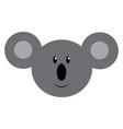 face of a baby koala or color vector image