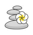 flower with rock spa concept filled outline icon vector image vector image