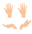 hands human symbols icon vector image