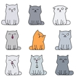 Nine cute kittens vector image