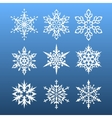 snowflakes set nine design element vector image