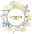 superfood round banner color sketch vector image vector image