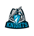 colorful logo knight s emblem in iron armor a vector image vector image