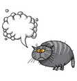 fat cat-100 vector image vector image